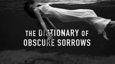 """""""Dictionnary of Obscure Sorrows"""" : les maux des mots"""