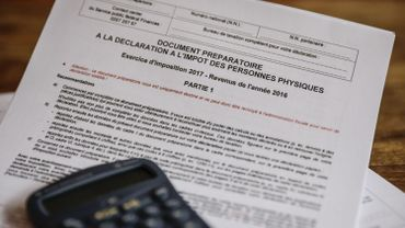 Selon l'OCDE, la part moyenne de l'impôt sur le revenu dans le total des recettes fiscales est passée de 24,1% en 2014 à 24,4% en 2015, tandis que le poids respectif des cotisations de sécurité sociale et des taxes sur les biens et les services (y compris la TVA) a légèrement diminué.