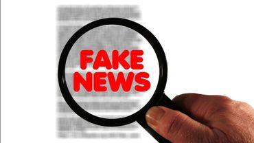 La chasse aux fausses infos: bientôt un sport national?