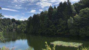 Le plus grand lieu de reproduction pour poissons en Wallonie construit au Lac de Robertville