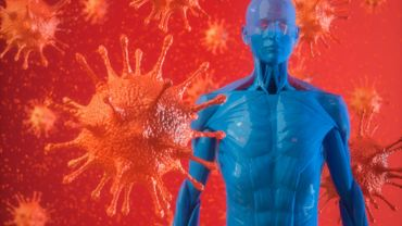 Virus et système immunitaire, l'immunité croisée pourrait nous donner un coup de pouce