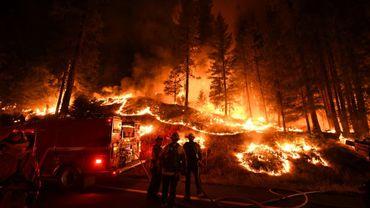 Des pompiers luttent contre les flammes de l'incendie Carr, près de la ville californienne de Redding, le 31 juillet 2018