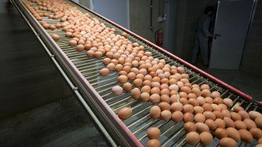 Le Luxembourg est le huitième pays européen où des oeufs contaminés au fipronil ont été mis sur le marché.