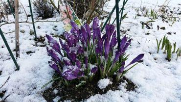 Le printemps débute ce mardi avec … de la neige