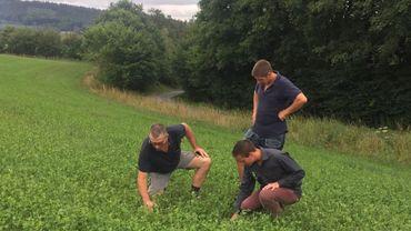 En Wallonie, une ferme sur sept est bio