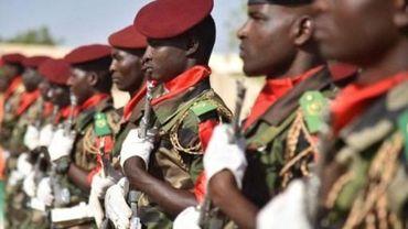 Niger: six soldats tués dans le sud-est par les islamistes de Boko Haram