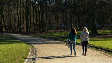 Intempéries: le Bois de la Cambre rouvert à la circulation, plusieurs parcs bruxellois toujours fermés
