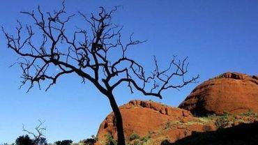 Australie: le sommet du rocher Uluru ne sera plus accessible aux touristes en 2019