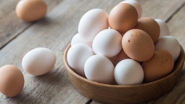 Instagram : La photo d'un œuf devient la publication la plus likée
