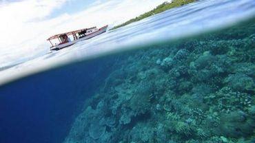 Le parc national de l'île de Bunaken, en Indonésie