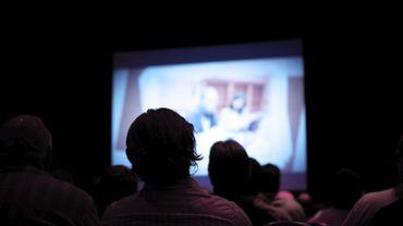 Pas moins de 300 films français ont été réalisés en 2015