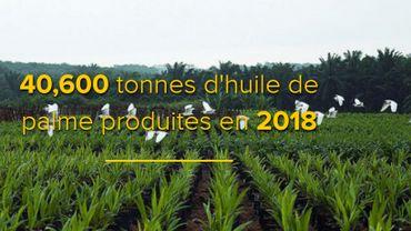 La société publique belge Bio mise en cause pour un investissement en RDC
