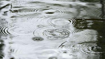 Les pluies semblent suffisantes pour éviter la sécheresse en Wallonie cet été