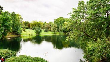 Et si on se baignait dans l'étang du bois de la cambre?
