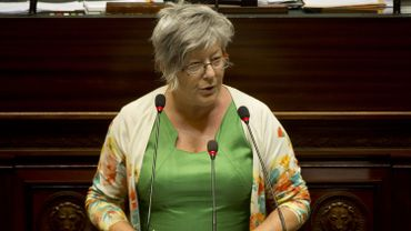 Ecolo demande une commission d'enquête parlementaire