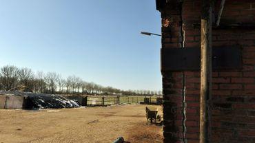 Fissures sur la façade d'un bâtiment de ferme à Middelstum aux Pays-Bas, le 12 mars 2013