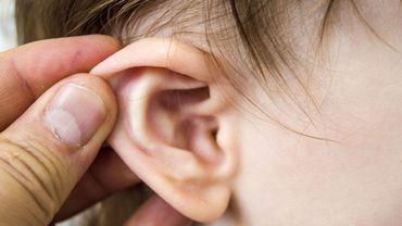 Les mammifères modernes, dont les humains, doivent leur ouïe fine à trois osselets de l'oreille moyenne que leurs ancêtres reptiles n'avaient pas.