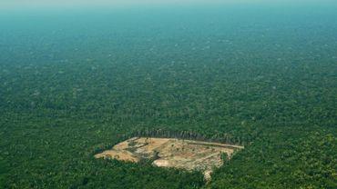 Vue aérienne d'une partie de la forêt amazonienne déboisée, au Brésil le 22 septembre 2017