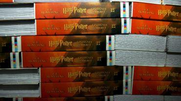 Autodafé de livres Harry Potter et Twilight: le prêtre polonais présente ses excuses