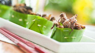 Manger des insectes n'est pas dénué de risques pour la santé