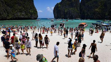 """Des petits requins à pointes noires sont de retour à Maya Bay en Thaïlande, baie rendue célèbre par le film """"La Plage"""" avec Leonardo DiCaprio"""