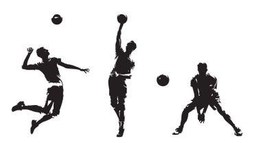 Volley : trois équipes d'Etalle au niveau national