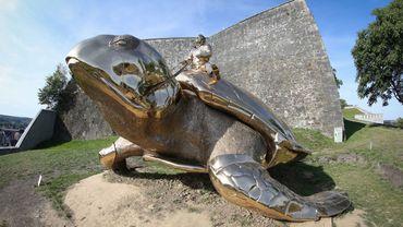 La tortue de Fabre, nouvel emblème de la ville et de la province de Namur