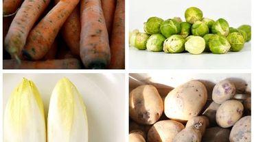 Ceinture alimentaire de Charleroi : produire tout ce que nous consommons