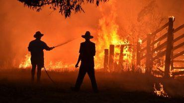 Des habitants tentent d'éteindre un incendie le 12 novembre 2019 près de Taree (350 km au nord de Sydney).