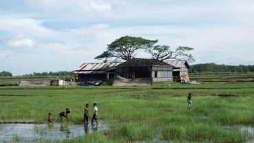 Birmanie: une enquête gouvernementale conclut à l'absence d'exactions contre les Rohingyas