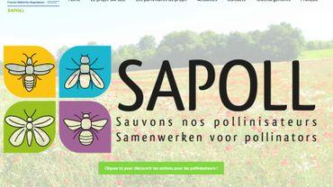 Le projet SAPOLL boucle quatre ans de sensibilisation à l'importance de la pollinisation