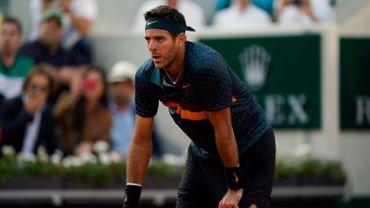 Fracture du genou pour Del Potro, forfait pour Wimbledon