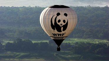 Roseline C. Beudels-Jamar devient la nouvelle présidente du WWF Belgique