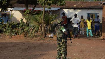 Centrafrique: des rebelles ont pris le contrôle d'une ville à 750 km de Bangui