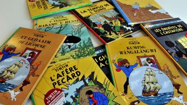 """Deux planches des aventures de Tintin, extraites de l'album """"Coke en Stock""""."""