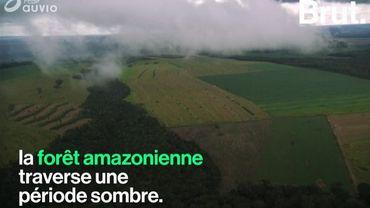 L'Amazonie connaît un pic de déforestation, le pire depuis 10 ans