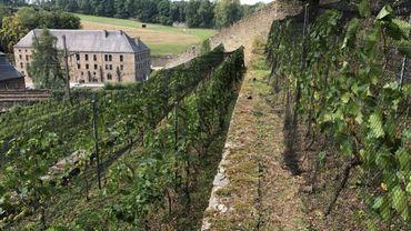 Le vignoble de Villers-la-Vigne.
