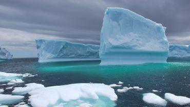 Chaque année au printemps, des icebergs dérivent au large du Canada. L'occasion pour l'industrie locale d'en transformer quelques-uns en produits de luxe exportés dans le monde entier.