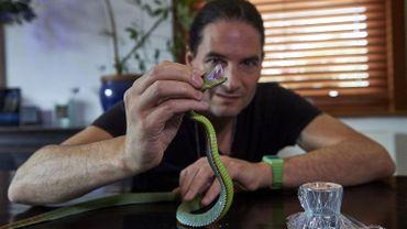 """""""Obsédé"""" par les serpents, Steve Ludwin a commencé à s'injecter de petites quantités de venin alors qu'il était âgé d'une vingtaine d'années."""