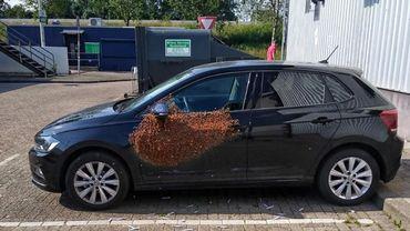 Photo: Politie Rotterdam-Oost, Basisteam IJsselland.