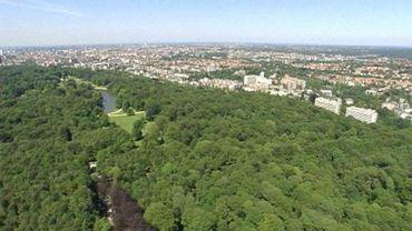 La Flandre acquiert des parcelles de forêts en périphérie bruxelloise