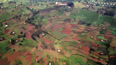 Rwandafrica: ensemble, se souvenir et prévenir la jeunesse