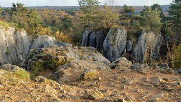 C'est dans ces rochers, au lieu dit du Fondry des chiens, que l'accident s'est produit ce mercredi après-midi