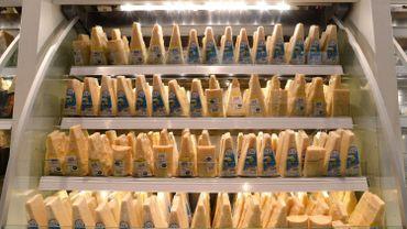 Le bien-être animal n'entre pas dans les critères imposés aux producteurs de lait.