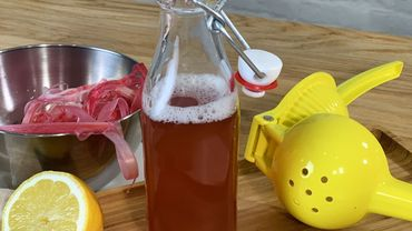 La Cuisine de Leslie - Sirop d'épluchures de rhubarbe