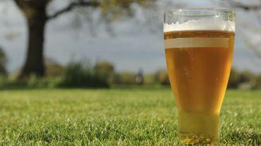 Des chercheurs israéliens ont fabriqué une bière semblable à celle que les pharaons ont bu il y a plus de 3 000 ans.