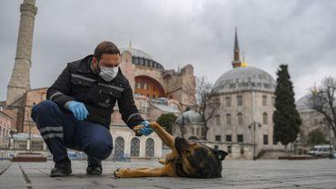 Agent municipal et son chien, à Istanbil ce 1er avril 2020