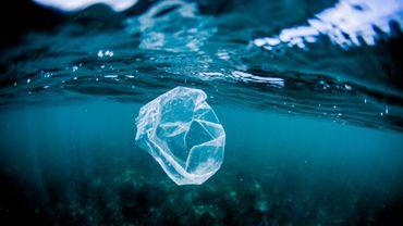 Recyclage, alternative au plastique: ce n'est pas ce que vous croyez !