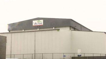 """Qualibeef (ex-Veviba) et sa filiale """"Abattoir et Marché"""" de Bastogne sont en faillite."""