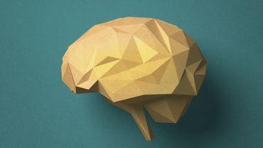 Quel est l'âge de votre cerveau ?